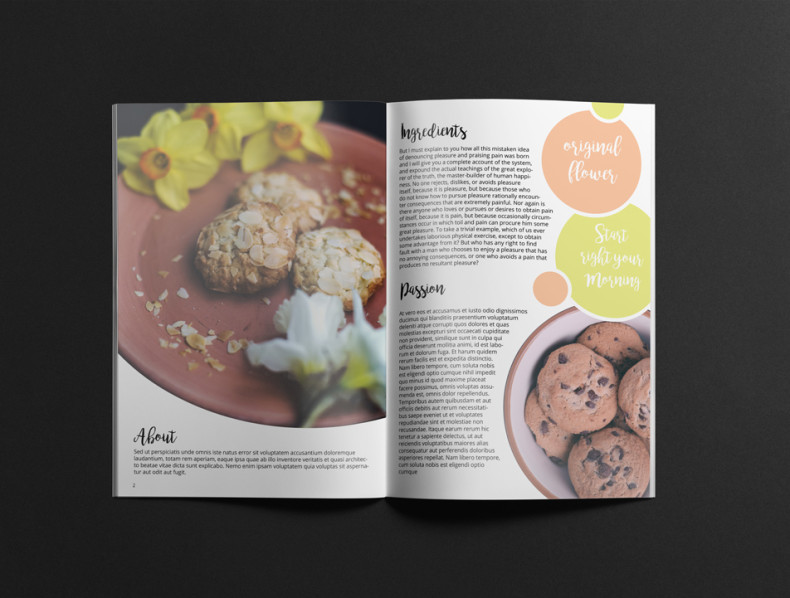 Cookie Biscuits Brochure